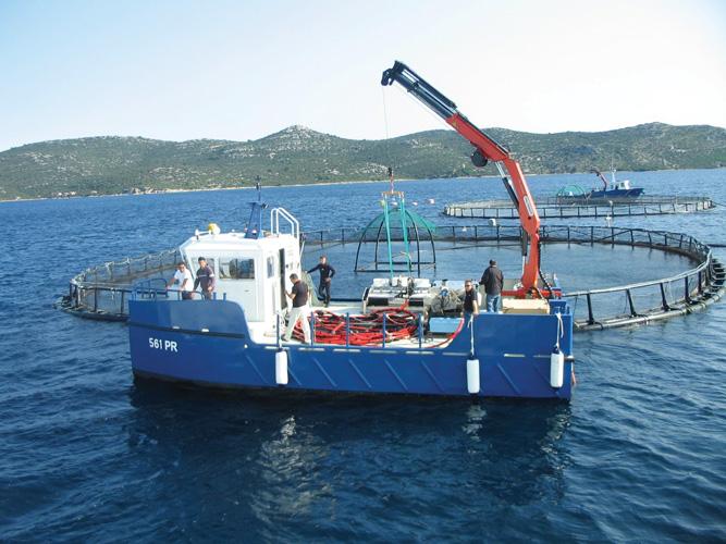 Katamaran  poduzeća Cromaris na ribogojilištu Kornati, izgrađen u brodogradilištu Radež u Blatu na Korčuli, 2014.