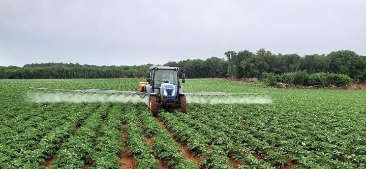 Primjena fungicida na nasadu krumpira, 2020.