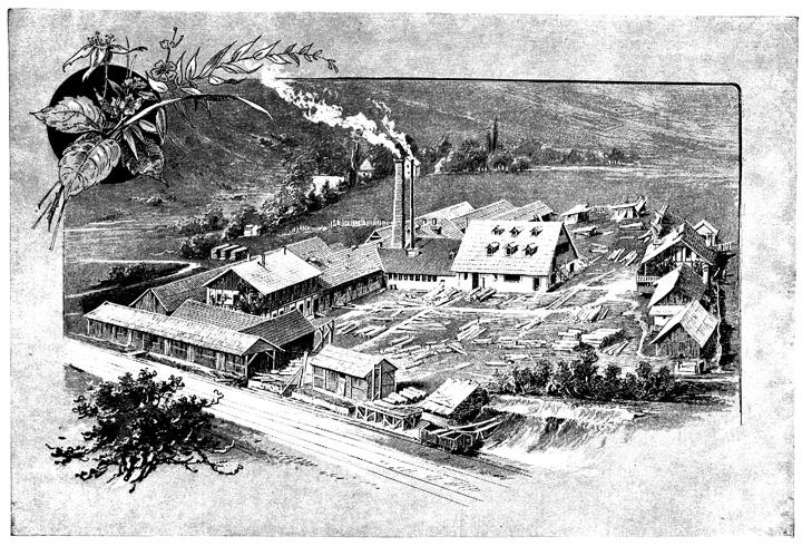 Tvornica škatulja u Vrbovskom, rad Vaclava Anderlea, 1898.